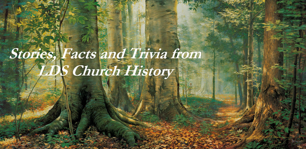 Sacred Grove: LDS Church History